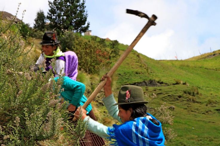 Andes mountain women ag