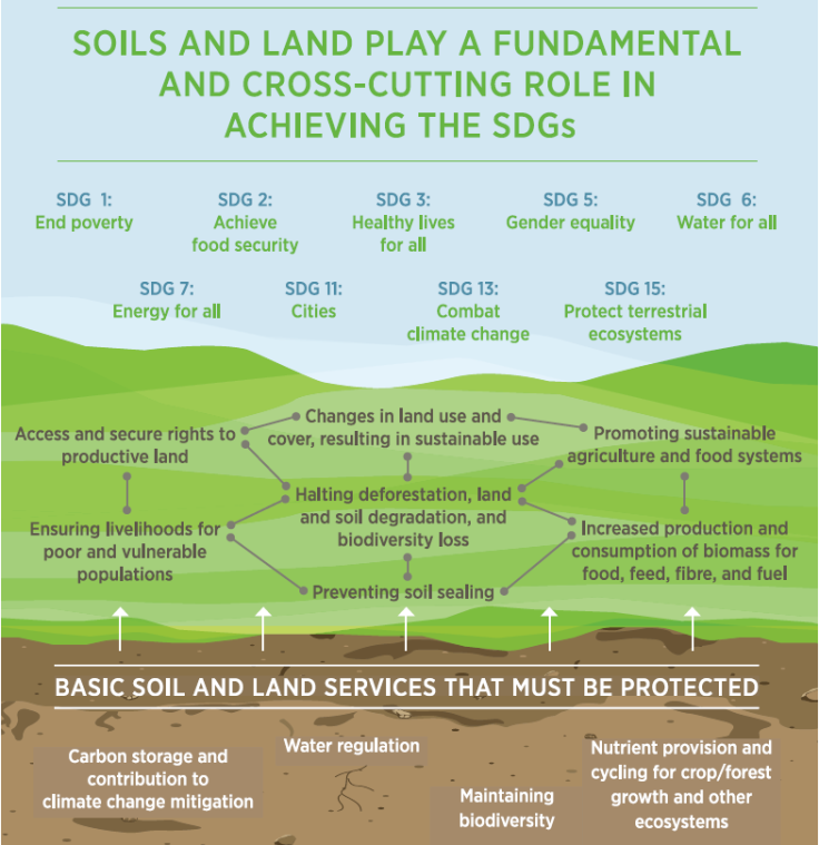 UN Value of Soils and Land 0915